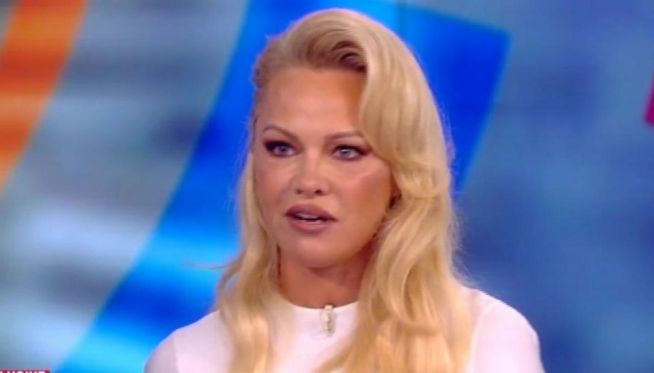 Pamela Anderson defends Julian Assange during US TV debate ...