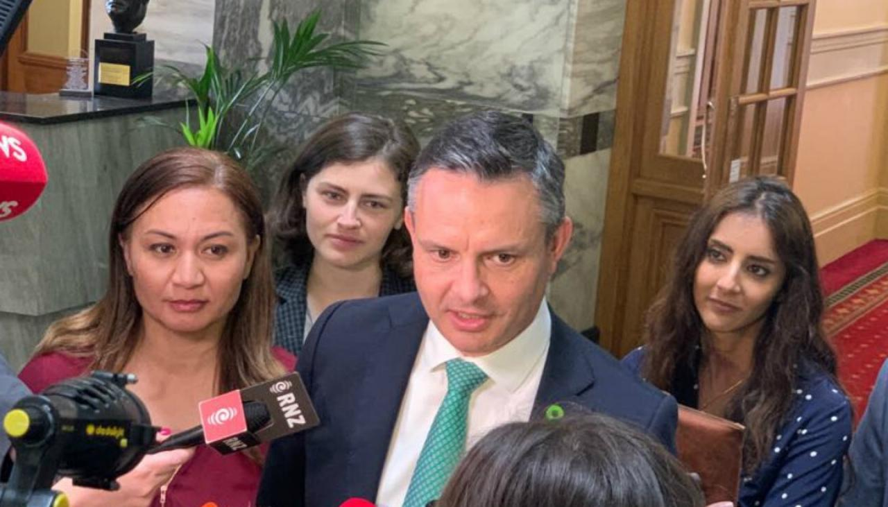 APEC 2021: Greens oppose law letting foreign security agents carry restricted weapons | Newshub